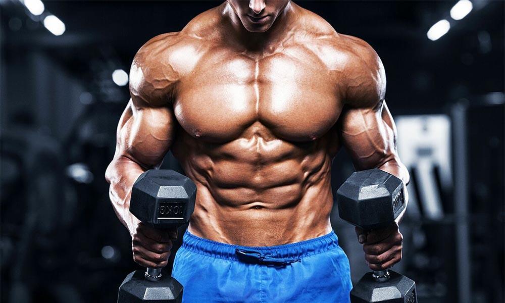 Whey Protein giúp tăng cơ bắp cho các Gymer